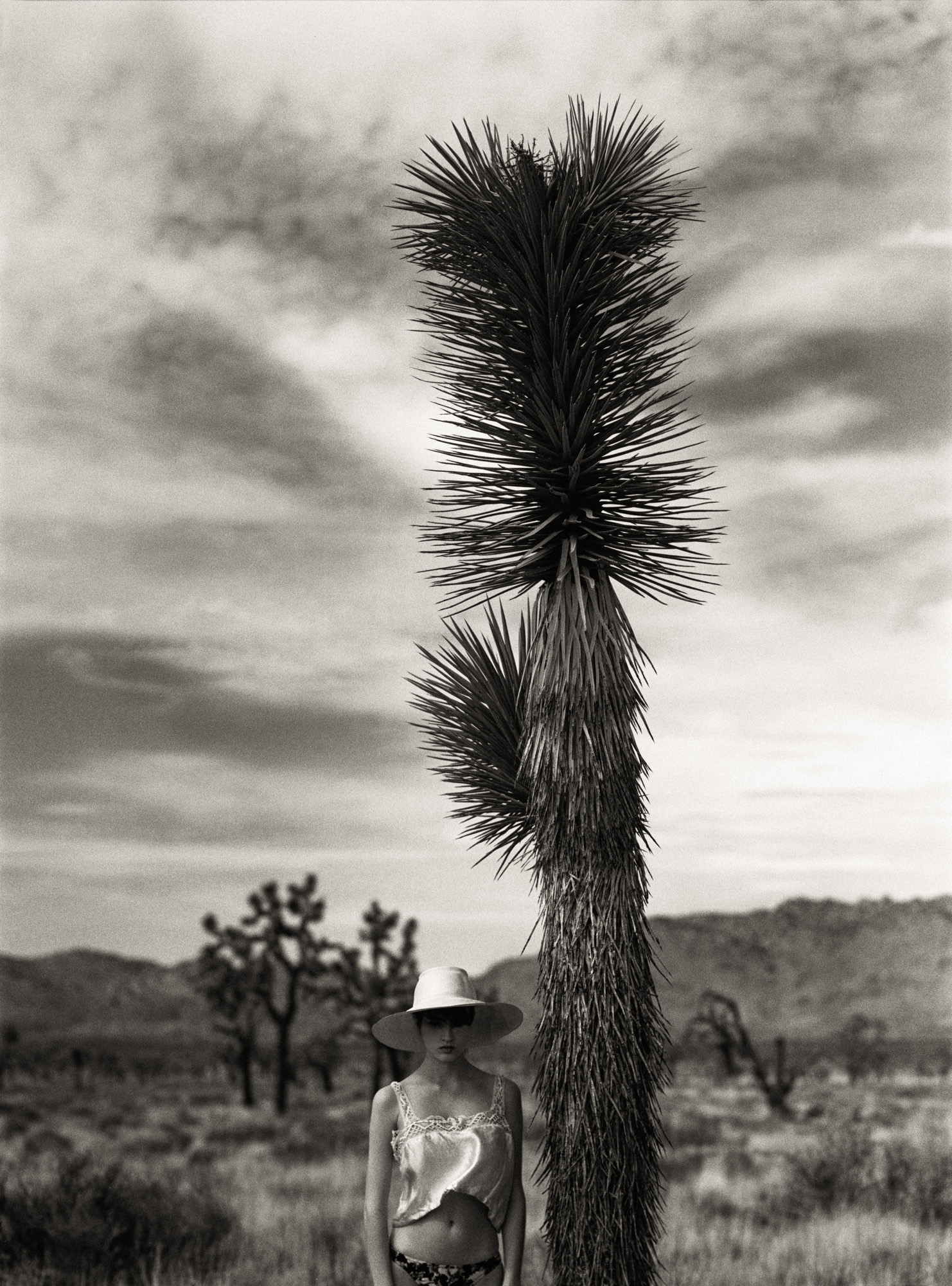TJ_Joshua_Tree_